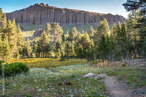 Early Morning On The Path to Wheeler Ridge on the Woodchuck Basin Trail, Calaver Canvas Print