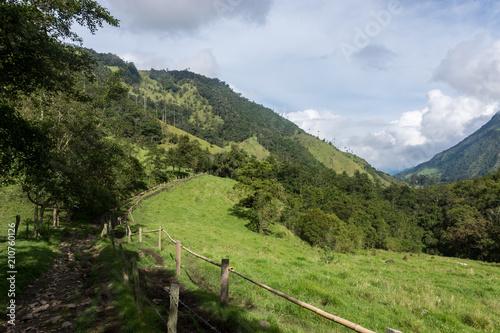 Keuken foto achterwand Zuid-Amerika land Vallée de Cocora, Salento, Colombie