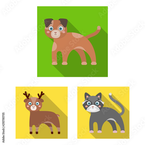 Toy animals flat icons in set collection for design Wallpaper Mural
