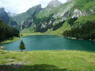 lake, mountain, landscape, water, nature, mountains, sky, reflection, forest, blue, summer, river, travel, green, clouds, view, alps, scenery, beautiful, tree, scenic, snow, outdoor, valley, see, seea