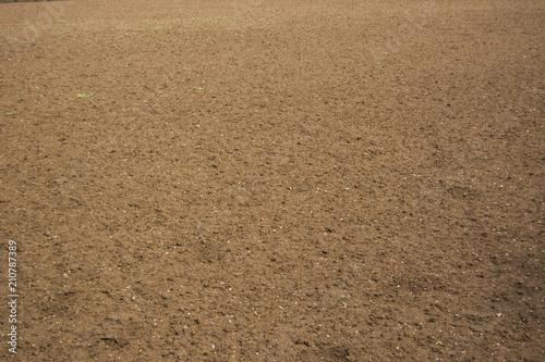 Obraz na plátne empty farm field