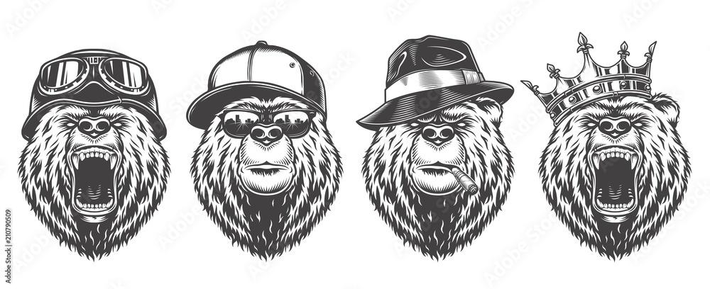 Fototapeta Vintage logo style bear