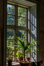 Lights Shine Through The Window