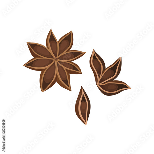 Flat vector icon of dry star anise with seeds Wallpaper Mural
