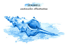 Hand Drawn Watercolor Illustration Of A Seashell On Sundy Beach. Isolated On White Background.