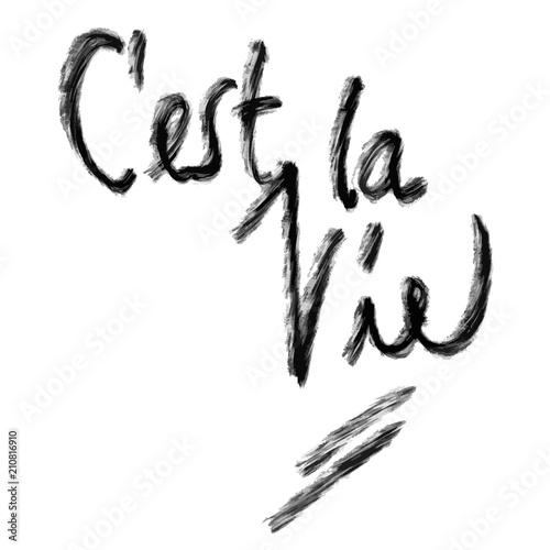 Pinturas sobre lienzo  C'est la vie lettering