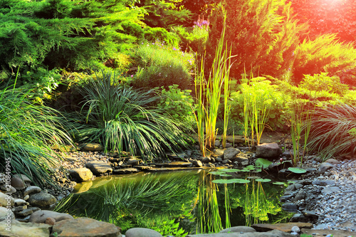 Obraz na plátně  Beautiful view on cute backyard in sunny day, fresh green grass lawn in sunlight
