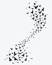 Silhouette Of A Flock Of Birds...
