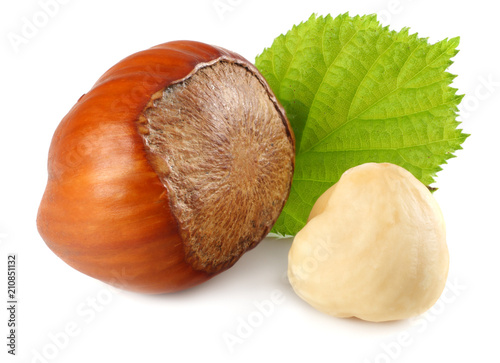 Fotomural hazelnuts with leaves isolated on white background. macro