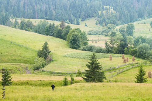 Foto op Canvas Olijf Green valley with haystacks and evergreen trees and the silhouette of a boy in the centre of a picture in summer mountains. Gorgeous mountainous landscape of Carpathians. Hiking Travel concept