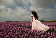 Girl Standing In Windy Tulip F...