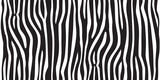 Fototapeta Zebra - stripe animal jungle texture zebra vector black white print background seamless repeat