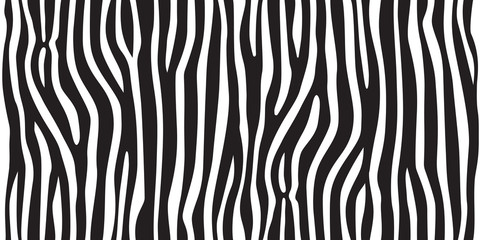 Fototapeta Zebry stripe animal jungle texture zebra vector black white print background seamless repeat