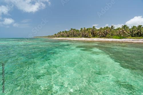 Foto op Plexiglas Caraïben Caribbean beach near Punta Cana, Dominican Repuböic