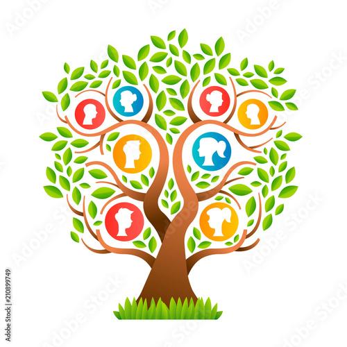 Fototapeta drzewa   drzewo-genealogiczne