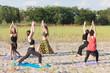 young women doing yoga outdoors