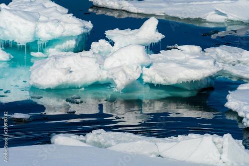 Foto auf Gartenposter Antarktika Ice landcape on the water in Arctic