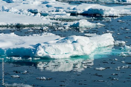 Papiers peints Arctique Ice landcape on the water in Arctic