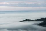 Mgła nad lasem w minimalistycznej fotografii - 210936939
