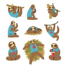 Funny Sloths Set, Lazy Exotic ...