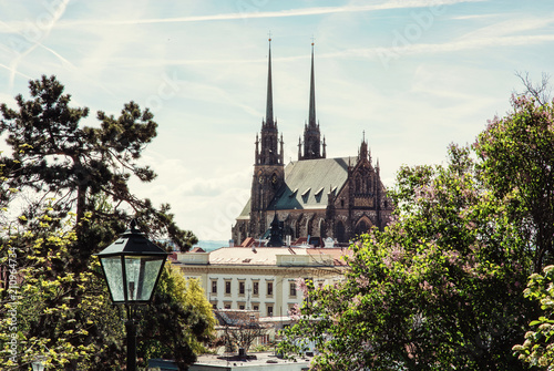 Cathedral of St. Peter and Paul in Brno, Czech Canvas Print