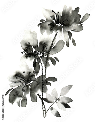 Ink painted flower. Hand painted illustration of flowers with leaves. Oriental traditional painting in style u-sin, sumi-e.