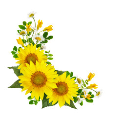 Sunflowers, daisies and acacia flowers and green leaves in a corner arramgement
