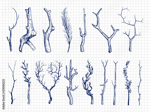 Fotografia, Obraz Hand drawn wood branches collection