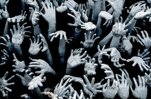Hands From Hell - Horror Background For Halloween Concept. Zombie Breakout - Zombie Hands Rising From The Darkness.