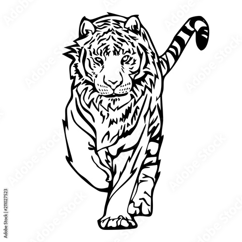Tiger Walk Silhouette Drawing Tattoo Vector With White Isolated