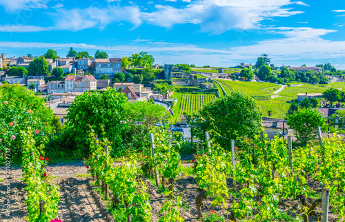 Vineyards at Saint Emilion, France Wallpaper Mural