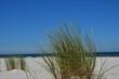 Summer on the beach of Debki