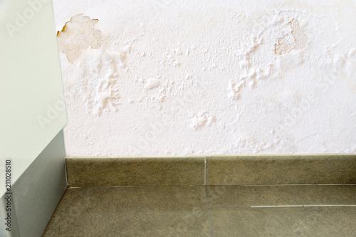 Fototapeta water leak in the wall