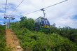 Cable way cabins above green tropics