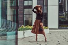 Fashion Elegant Woman Wearing ...