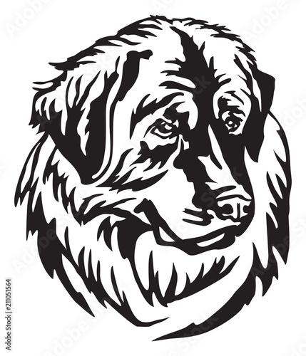 Fototapety, obrazy: Decorative portrait of Dog Leonberger vector illustration