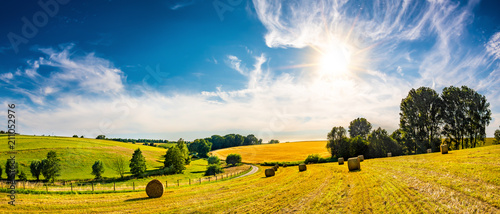Landscape in summer with bright sun, meadows and golden cornfield in the backgro Fototapeta