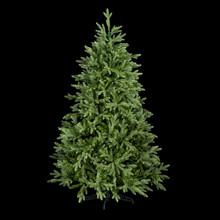 Christmas Tree Isolated Black Background