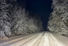 Night View On Vanishing Snow-covered Dirt Road Through Winter Forest Highlighted By Car Headlight. Novgorodsky Region, Russia