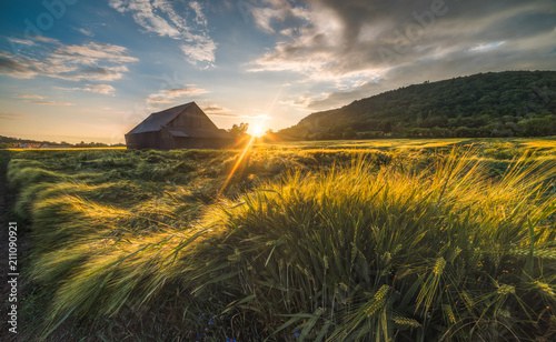 Fotografie, Tablou Old Shack in the Field at Sunset
