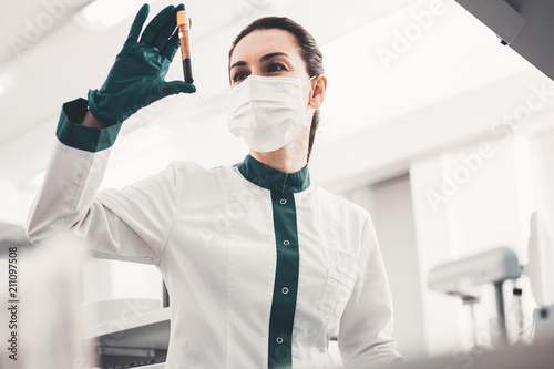 Numerous analyses. Portrait of qualified laboratory worker holding blood sample in hand and looking at it while wearing green gloves and medical mask