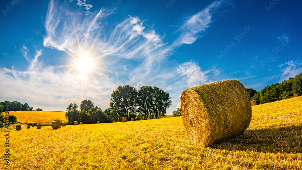 Fototapety, obrazy: Landscape in summer with hay bales on a field and blue sky with bright sun in the background
