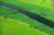 canvas print picture - Aerial landscape in Okavango delta, Botswana. Lakes and rivers, view from airplane. Green vegetation in South Africa. Trees with water in rainy season.