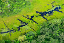 Aerial Landscape In Okavango Delta, Botswana. Lakes And Rivers, View From Airplane. Green Vegetation In South Africa. Trees With Water In Rainy Season.