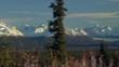 Pan Mountain Range Beyond Meadow