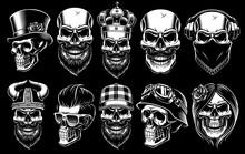 Set Of Different Skulls.