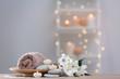 Leinwandbild Motiv Beautiful spa composition on table in wellness center