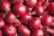 canvas print picture - Ripe red onions as background