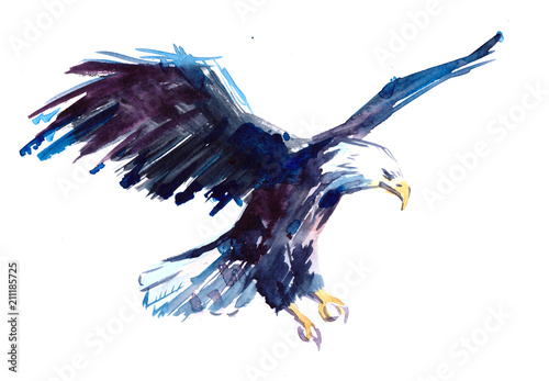 Obraz na plátně  Watercolor eagle