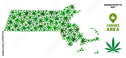 Cuadros en Lienzo Cannabis Massachusetts State map mosaic of marijuana leaves